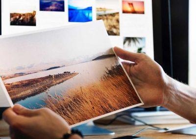 Visual Arts Portfolio